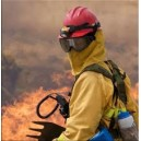 Helm Pemadam Kebakaran Hutan (Bullard Wildland/Forestry Fire Fighting Helmet)
